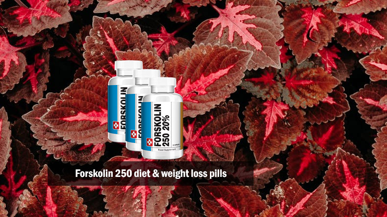Forskolin 250 Diet and Weight Loss Pills